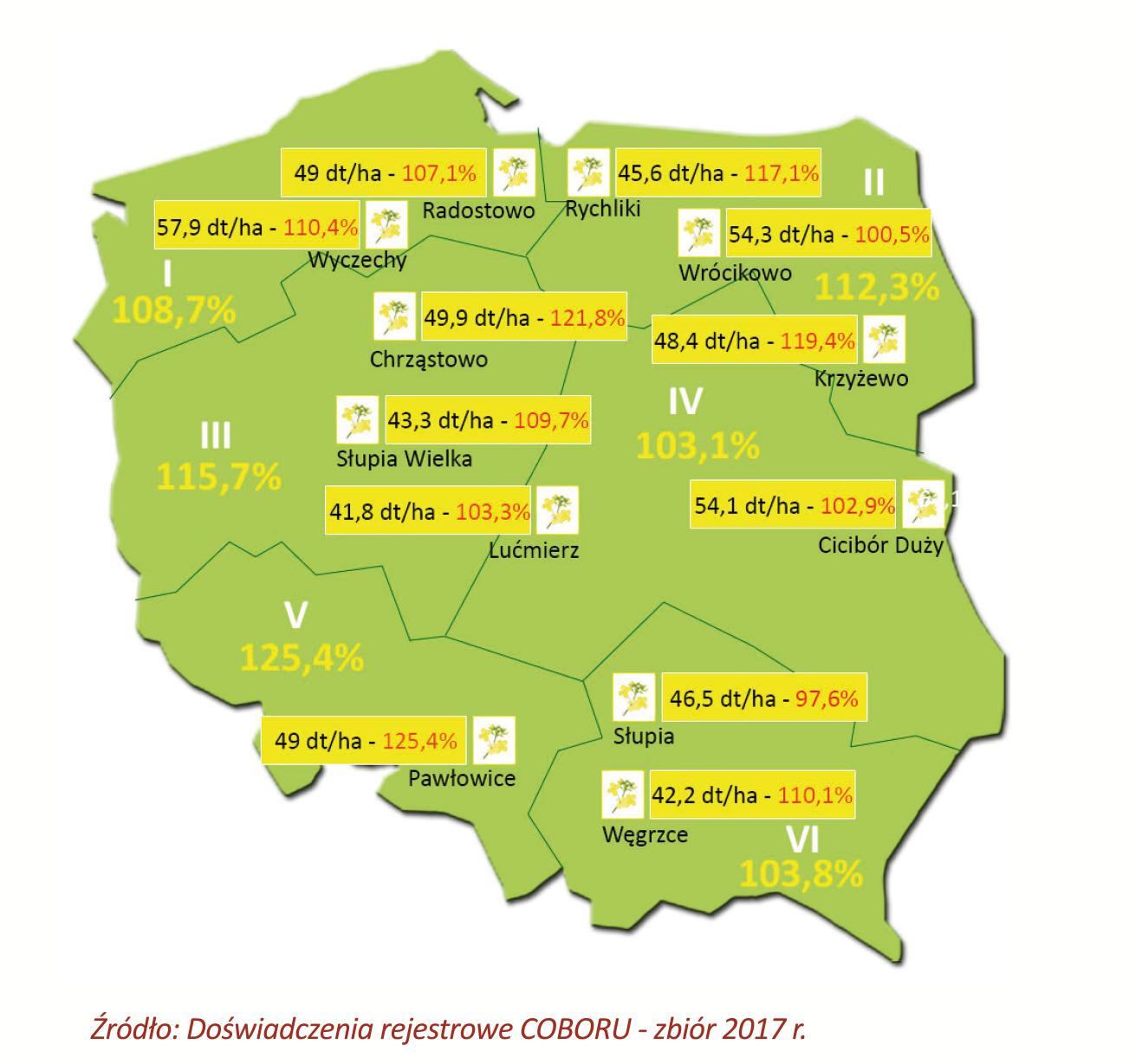 MEMORI CS odmiana populacyjna nowej generacji. Wszystko na topnasiona.pl